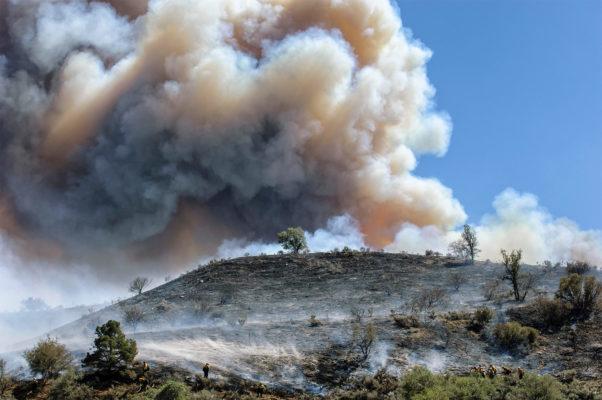California fires, trauma and PTSD